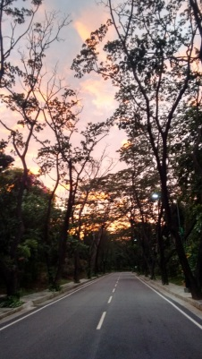Sunset road IIMB