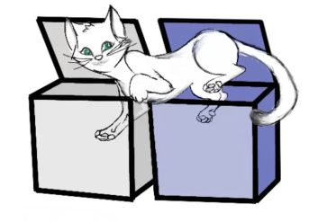 schrodinger-cat-two-boxes